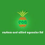 EASTERN & ALLIED AGENCIES